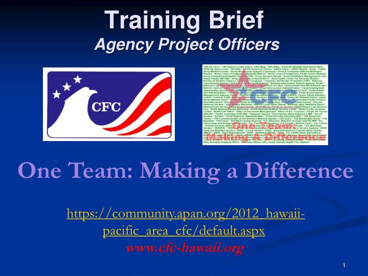 Training brief agency project officers