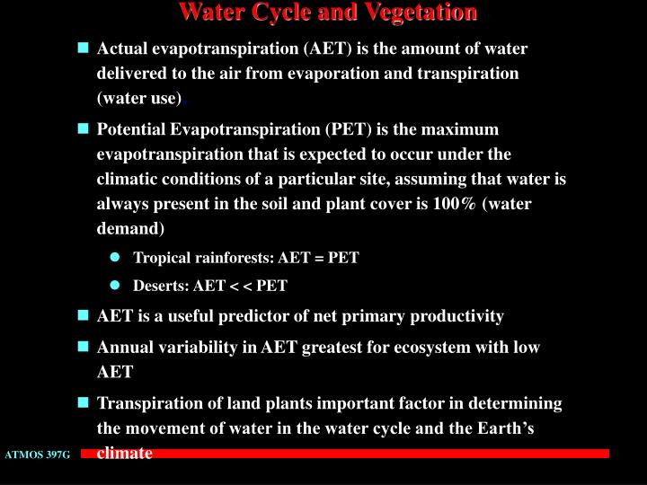 Water Cycle and Vegetation