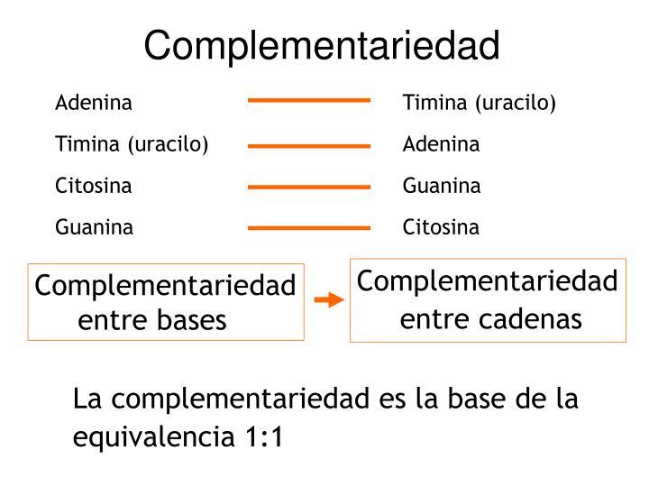principio de complementariedad bases of dating