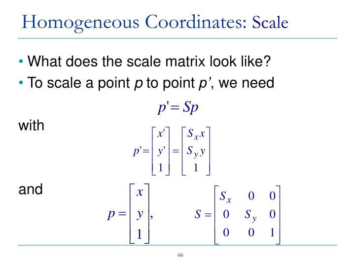 Homogeneous Coordinates: