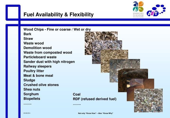 Fuel Availability & Flexibility