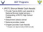 aef programs1