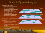 team 1 system analysis