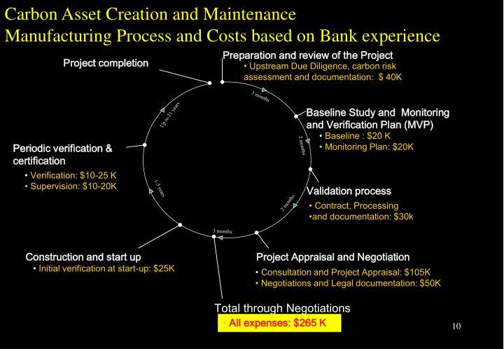 Carbon Asset Creation and Maintenance