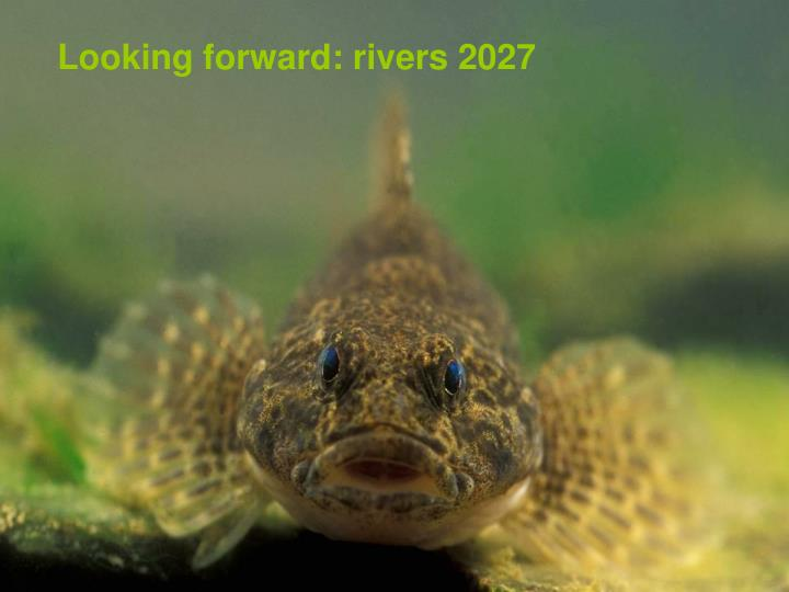 Looking forward: rivers 2027