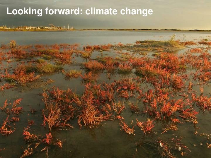 Looking forward: climate change