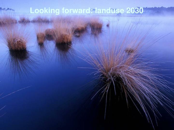 Looking forward: landuse 2030