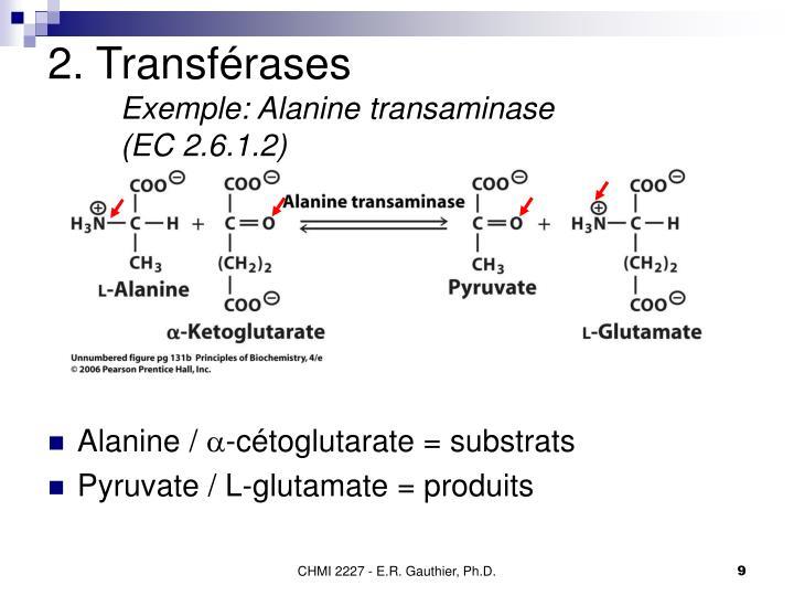 2. Transférases