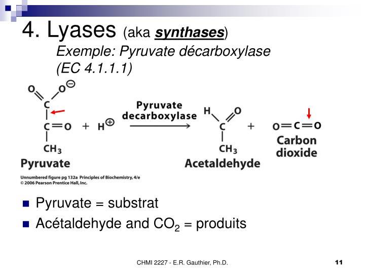4. Lyases