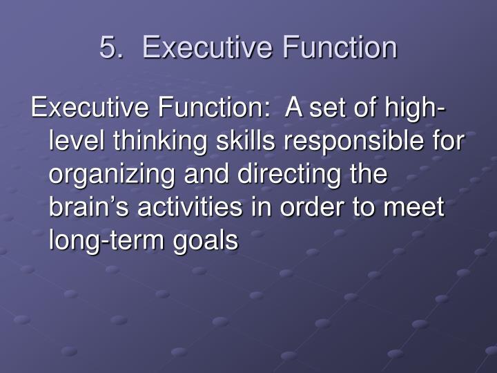 5.  Executive Function