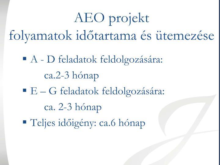 AEO projekt