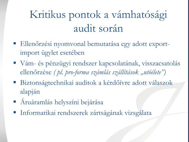 Kritikus pontok a vámhatósági audit során