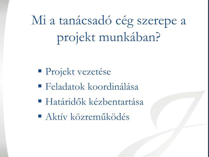 Mi a tanácsadó cég szerepe a projekt munkában?