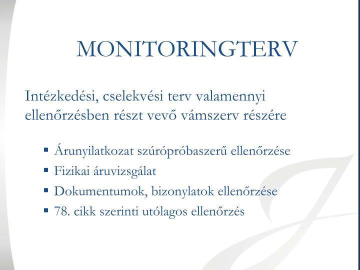 MONITORINGTERV