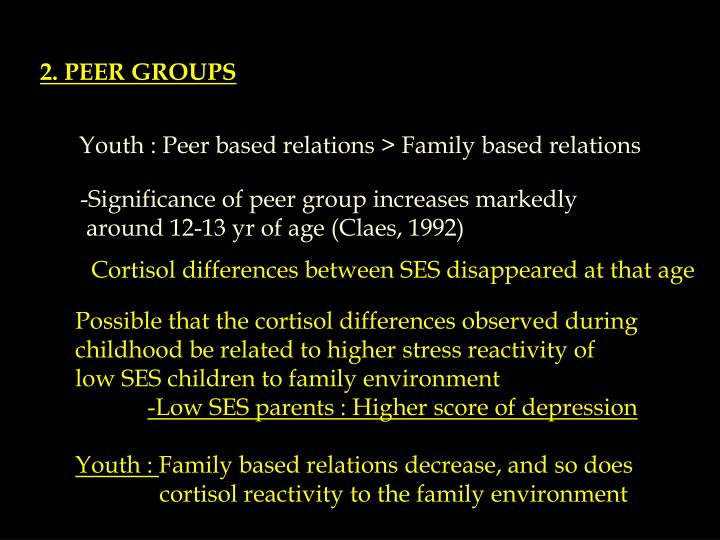 2. PEER GROUPS