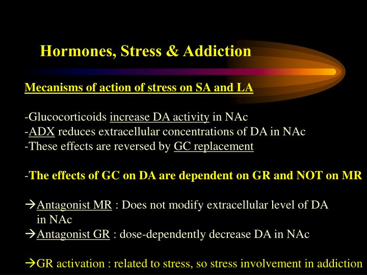Hormones, Stress & Addiction