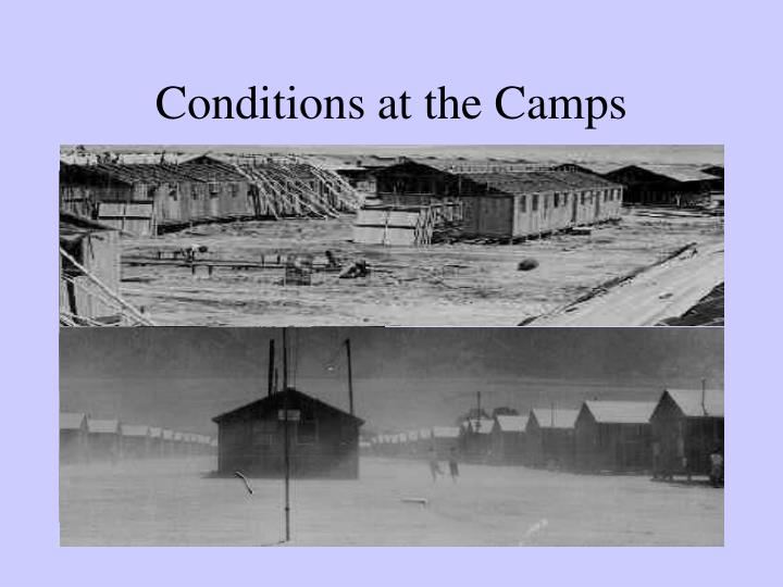 Conditions at the Camps