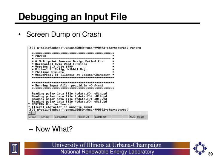 Debugging an Input File