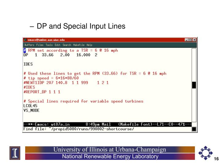 DP and Special Input Lines