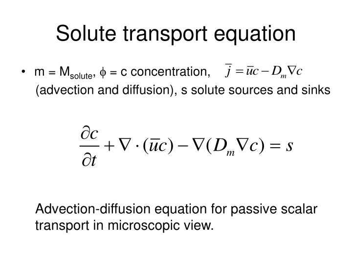 Solute transport equation