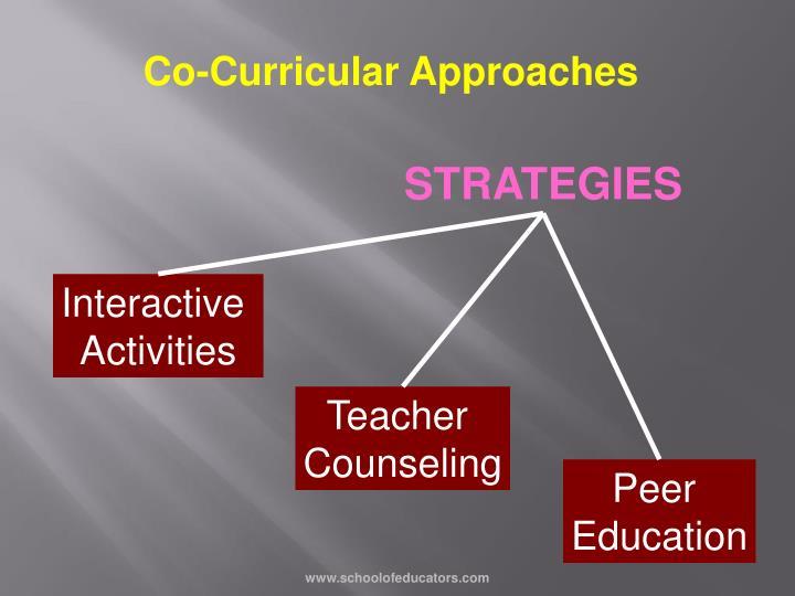 Co-Curricular Approaches