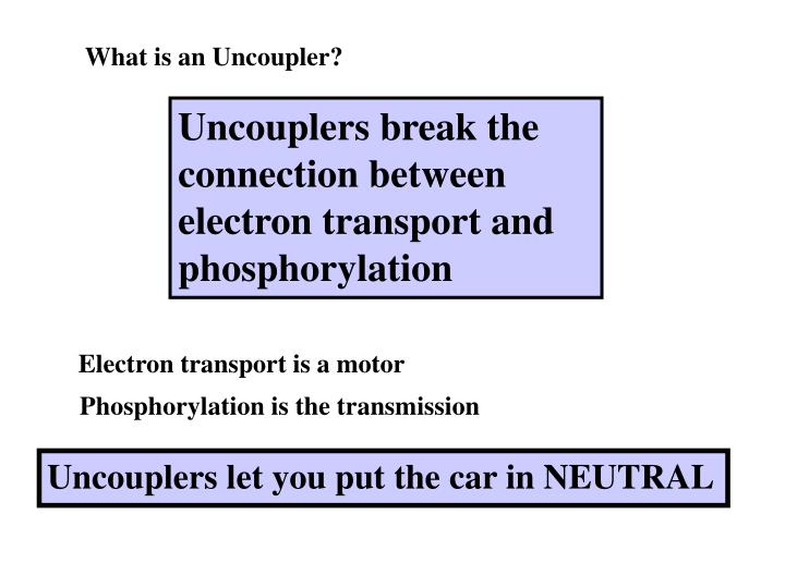 What is an Uncoupler?
