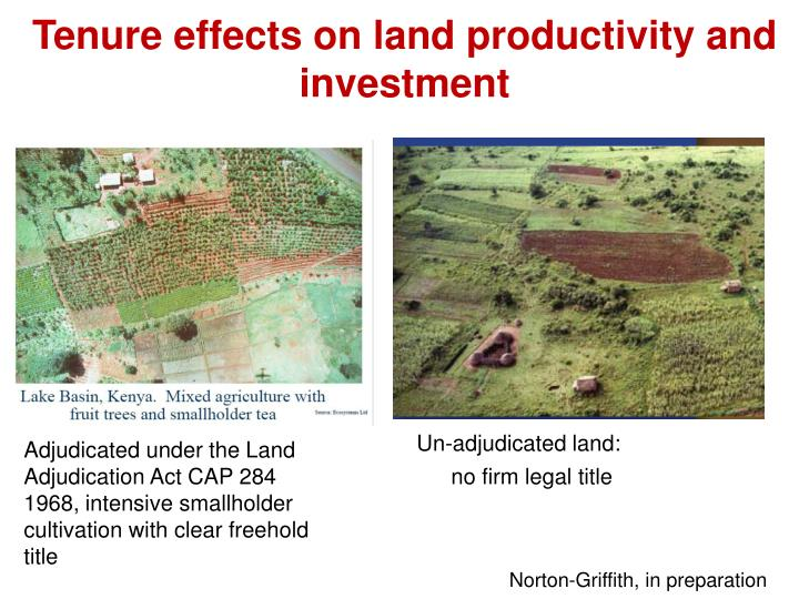 Tenure effects on land productivity and investment