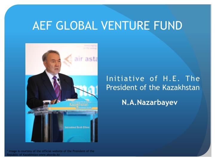 AEF GLOBAL VENTURE FUND