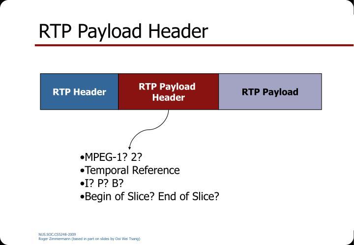 RTP Payload Header