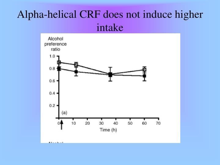 Alpha-helical CRF does not induce higher intake