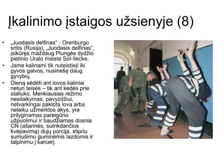 Įkalinimo įstaigos užsienyje (8)