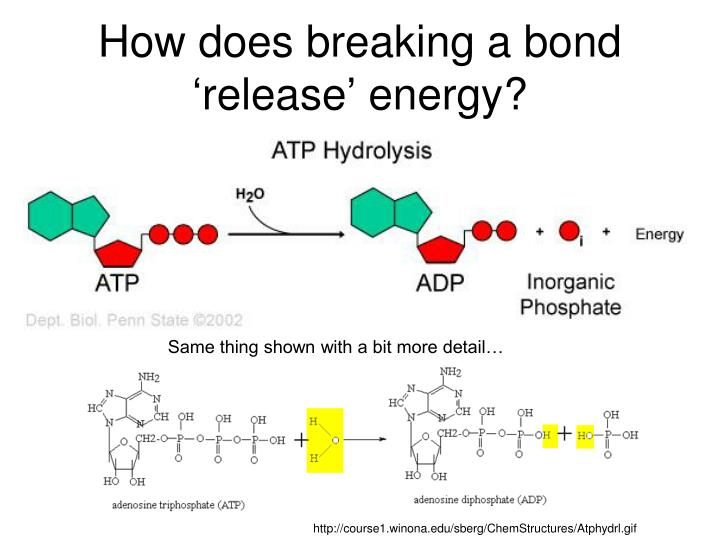 How does breaking a bond