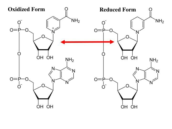 Oxidized Form