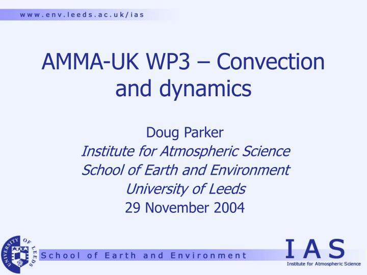 amma uk wp3 convection and dynamics