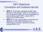 wp3 objectives convection soil moisture diurnal