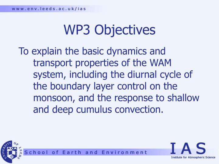 WP3 Objectives