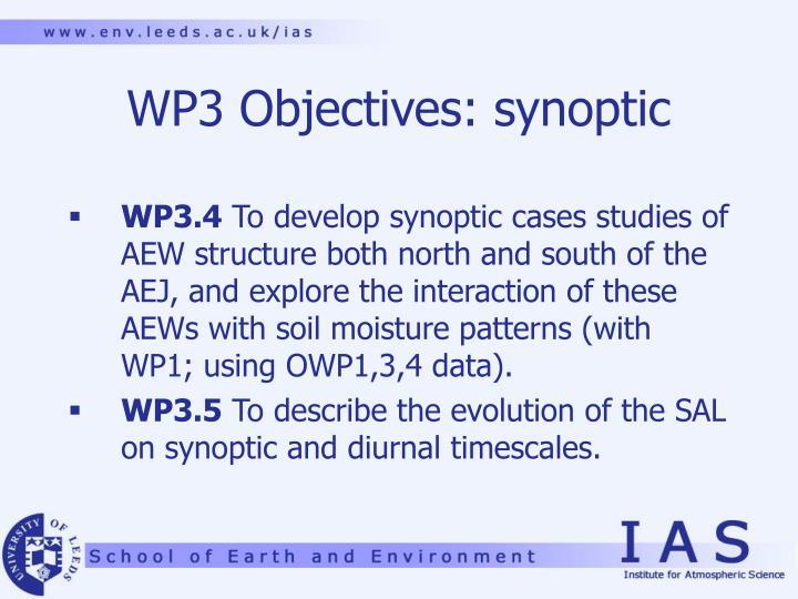 WP3 Objectives: synoptic
