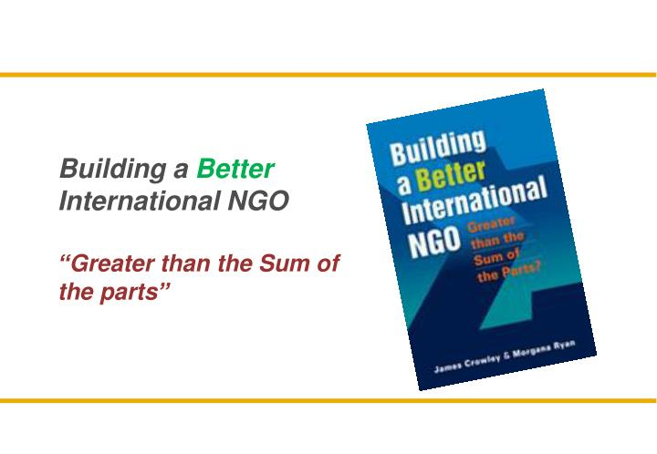 building a better international ngo greater than the sum of the parts