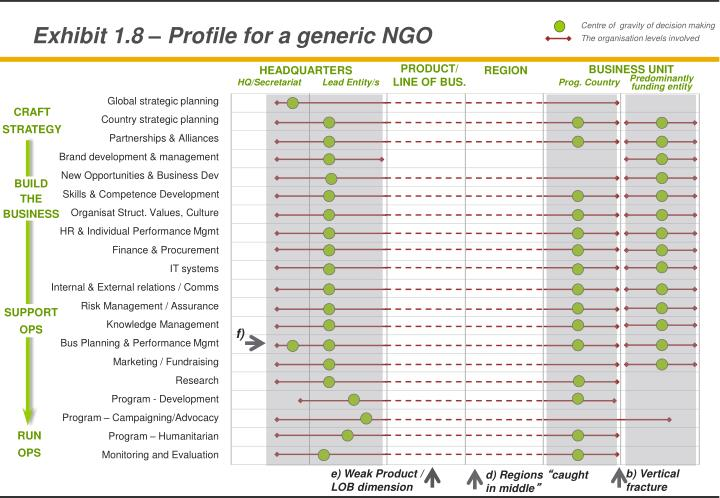 Exhibit 1.8 – Profile for a generic NGO