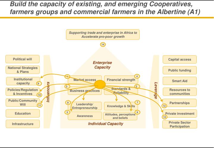 Build the capacity of existing, and emerging Cooperatives, farmers groups and commercial farmers in the Albertine (A1)
