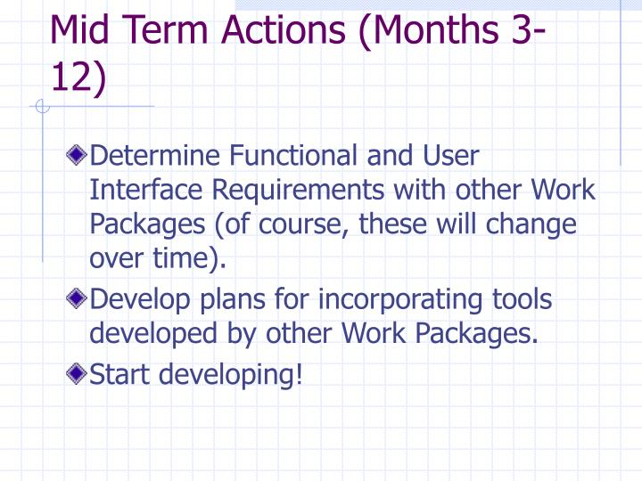 Mid Term Actions (Months 3-12)