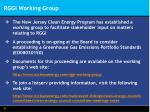 rggi working group