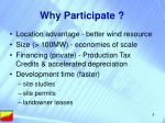 why participate1