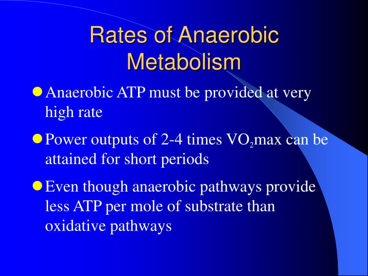 Rates of Anaerobic Metabolism