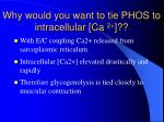why would you want to tie phos to intracellular ca 2