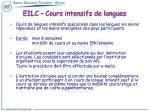 eilc cours intensifs de langues