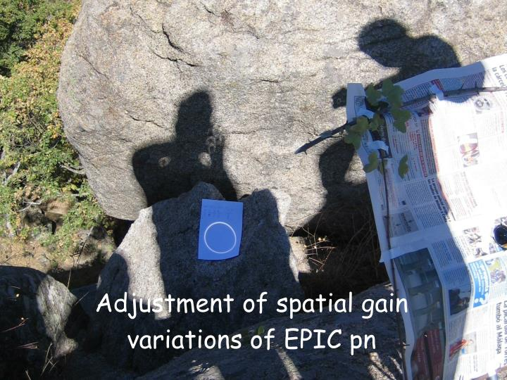 Adjustment of spatial gain variations of EPIC pn