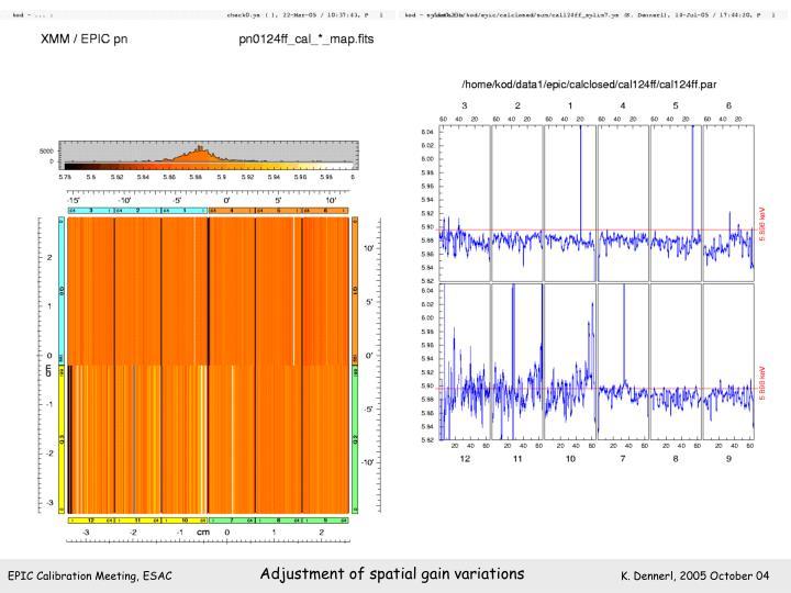 Adjustment of spatial gain variations