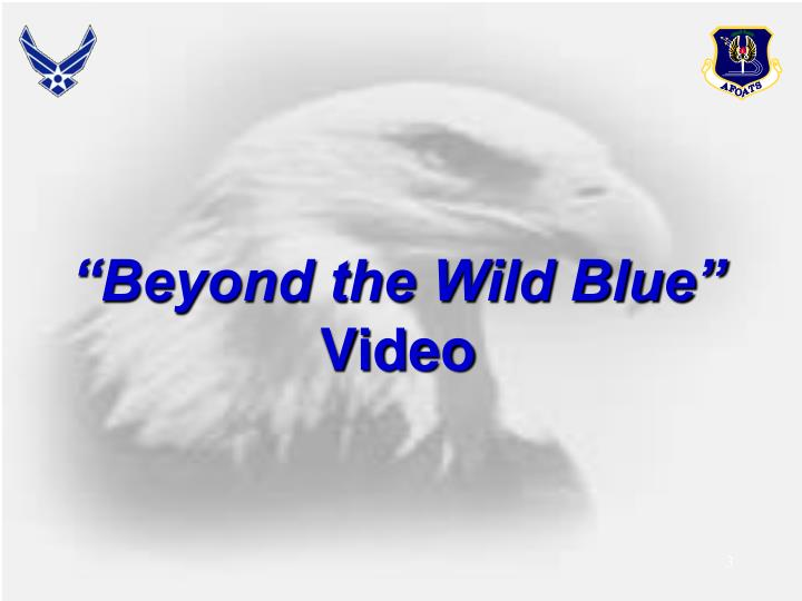 Beyond the wild blue video