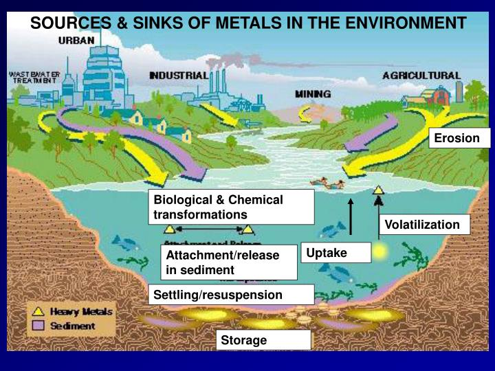 SOURCES & SINKS OF METALS IN THE ENVIRONMENT